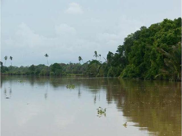 نهر كيناباتانجان أطول نهر في ولاية صباح و ثاني أطول نهر في ماليزيا