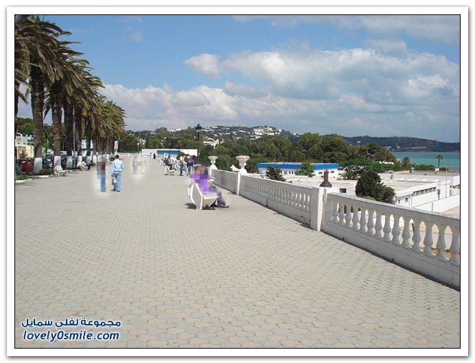 السياحة فى تونس 2014, صور سياحيه من تونس 2014