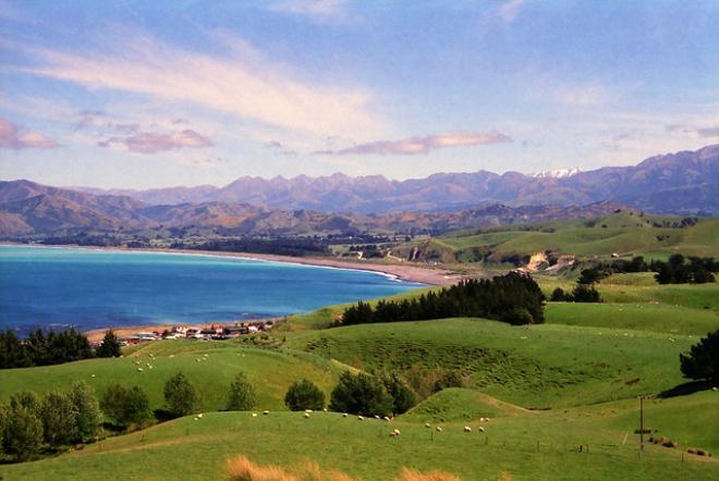 كايكورا kaikoura ( اهم اماكن سياحية فى سياحة نيوزيلندا)