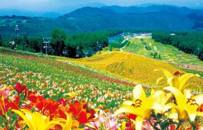 صور اجمل الاماكن السياحيه فى اليابان