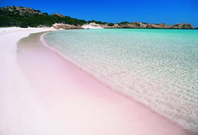 رحلة سياحية الى شاطئ الرمال الوردى ( هذا الشاطئ الرائع الموجود فى جزر البهاما)
