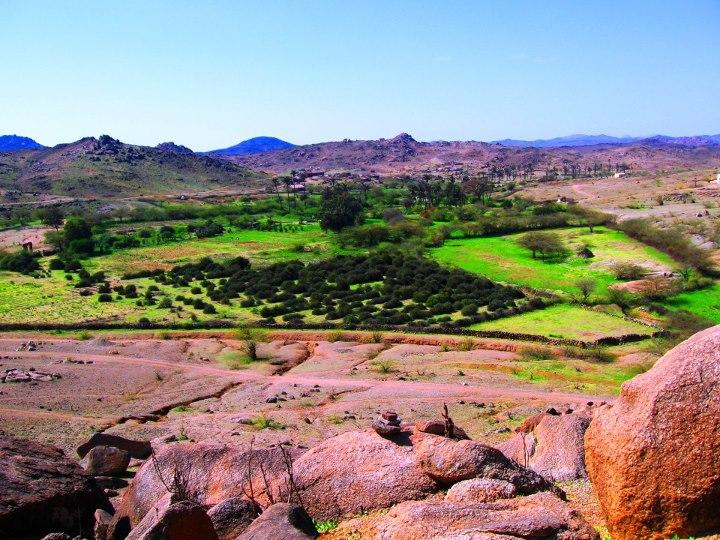 أركويت (فردوس الشرق) ( السياحة فى السودان)