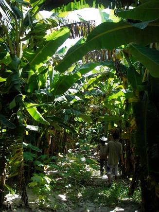 زيارة سياحيه الى حديقة المورثات الزراعية في مدينة بوتراجايا