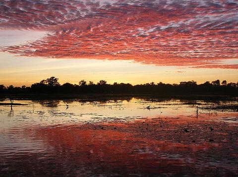 كاكادو – استراليا ,تجذب السياح نظرا لمناظرها الطبيعية الساحرة