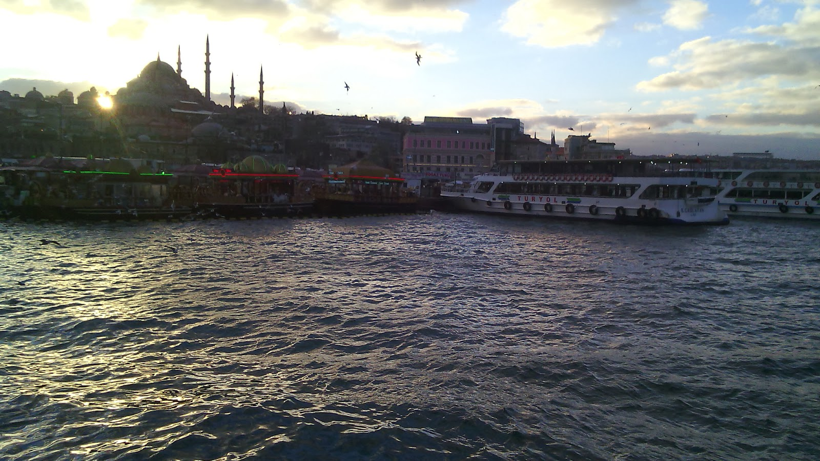 صور من توليب للسياحة والسفر ، اسطنبول ، تركيا