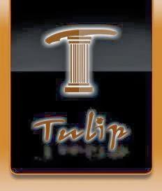 شركة توليب للسياحة والسفر لتنظيم رحلات سياحية إلى تركيا