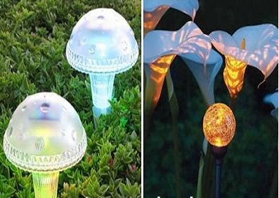 تقرير مصور عن حديقة الفراشات المضيئة في سيلانجور في ماليزيا