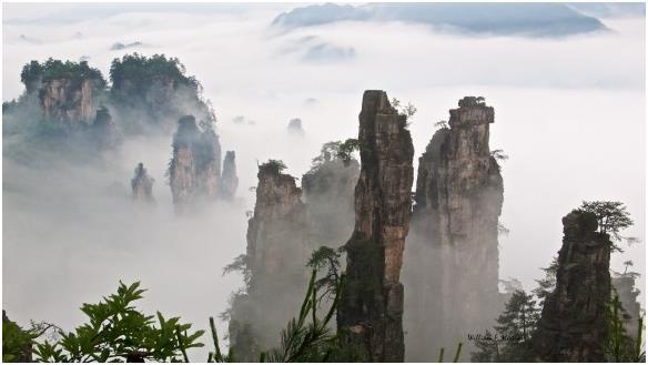 جبال تيانزي الصينية الشاهقة