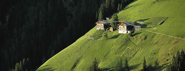 زيارة الى فيلجراتينتال فى النمسا
