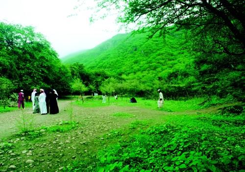 صور جمال الطبيعة في مدينة صلالة - سلطنة عمان