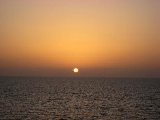 صور دبي