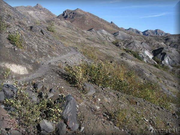 زيارة الى واشنطن بركان جبل سانت هيلينز