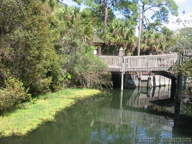 زيارة الى فلوريدا بالصور