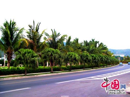 مدينة سانيا في الصين صور و معلومات,السياحة في الصين 2015