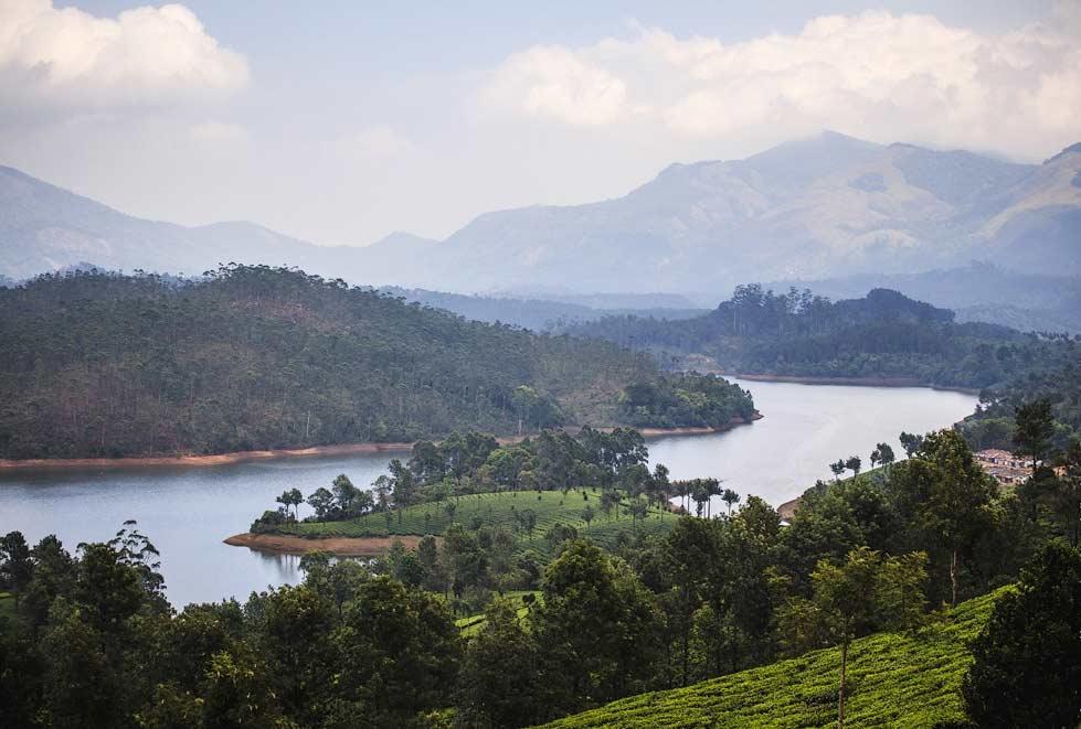 تقرير مصور عن مزارع الشاي الجميلة في مونار الهندية