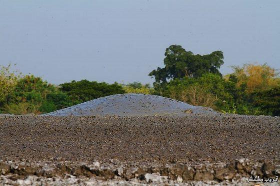 زيارة الى البراكين الطينية فى اندونيسيا