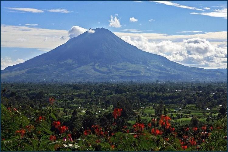 صور من سومطرة - اندونيسيا