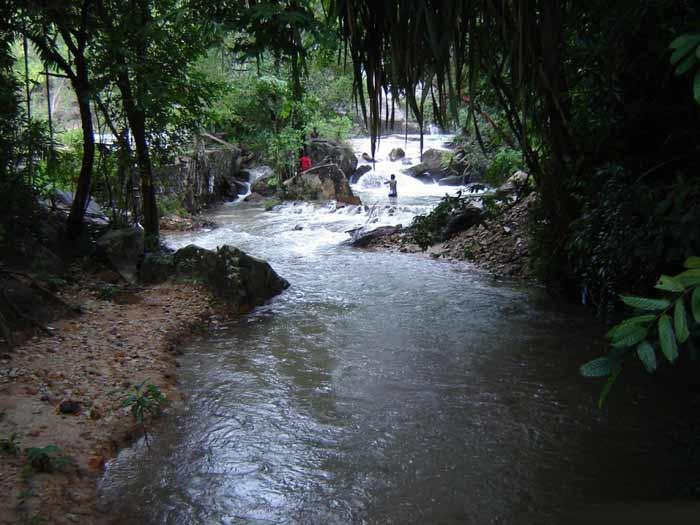 صور شلالات جزيرة بينانج في ماليزيا