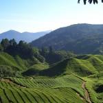 صور اهم الاماكن السياحية في ماليزيا 2014