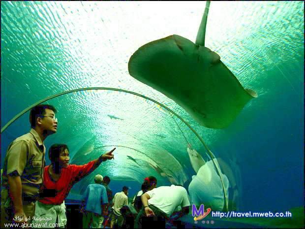زيارة الى المدينة المائية في تايلاند
