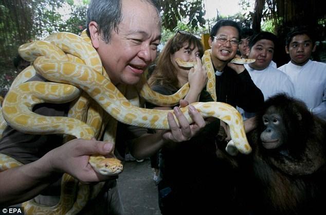 صور حديقة حيوان من نوع خاص - مانيلا - الفلبين