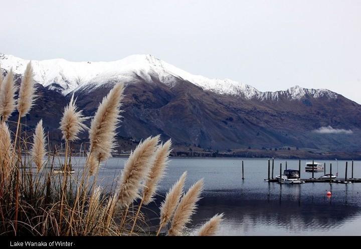نيوزيلندا وسحر الطبيعه .. بالصور