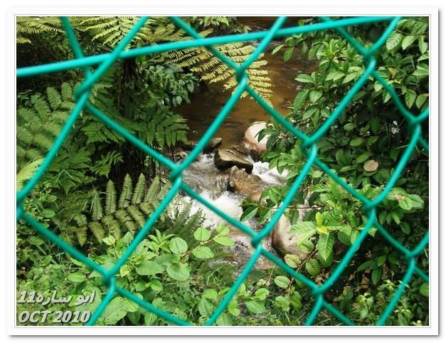 صور معالم ماليزيا السياحية و صور حدائق ماليزيا