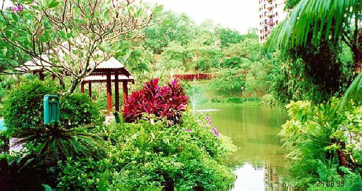 malaysia nature صور الطبيعه فى ماليزيا