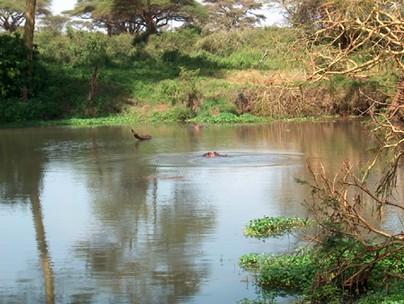 السياحة فى نيروبي Nairobi ( المياه البارده وتعد من أكبر المدن في أفريقيا 2015)