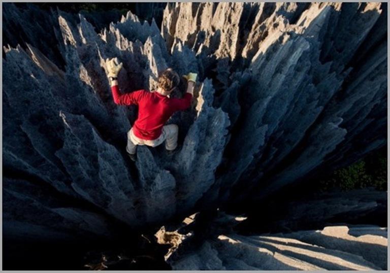 رحلة الى غابة مدغشقر الحجرية 2015
