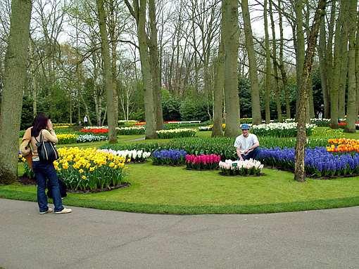 السياحة فى هولندا شذى الزهور وعبير الورود