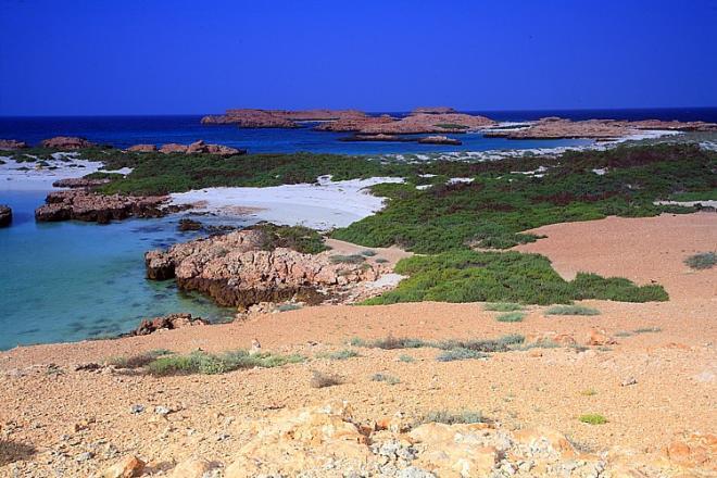 رحلة الى جزر الديمانيات العمانية