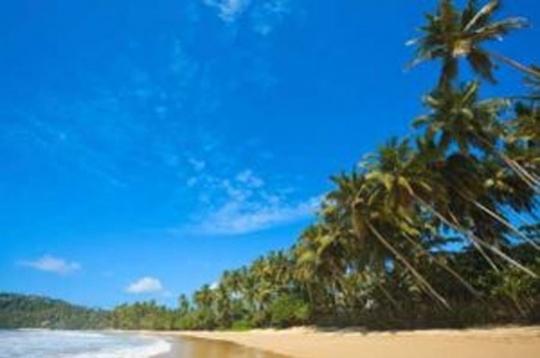سريلانكا تشتهر بشواطئها الرملية