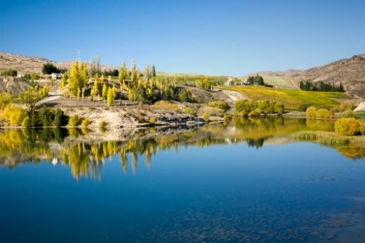 صور من نيوزيلندا،نيوزيلندا بالصور