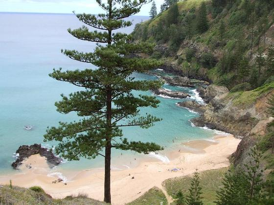 رحلة الى جزيرة نورفورك الاسترالية 2015