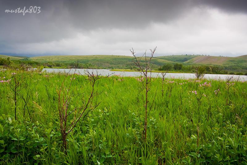 رحلة إلى بحيرات واترتون :: Waterton Lakes