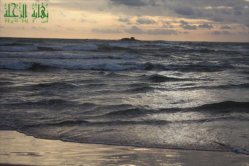 سيرلانكا جزيرة الشاي وأرض الأحلام (سرنديب)