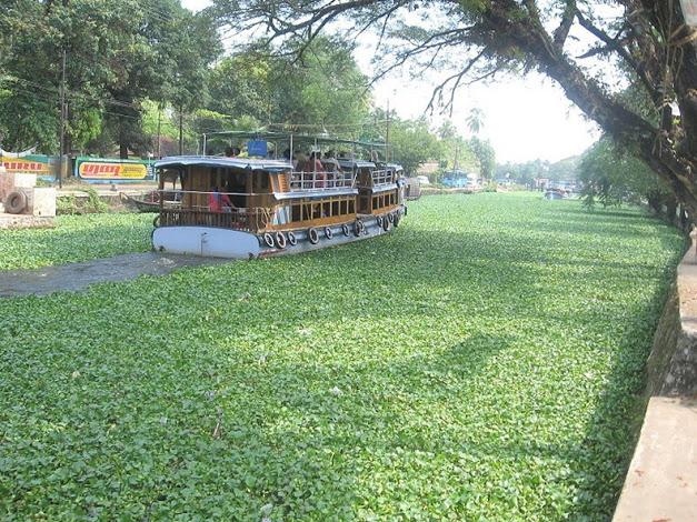 صور ومعلومات عن كيرالا الهنديه 2015