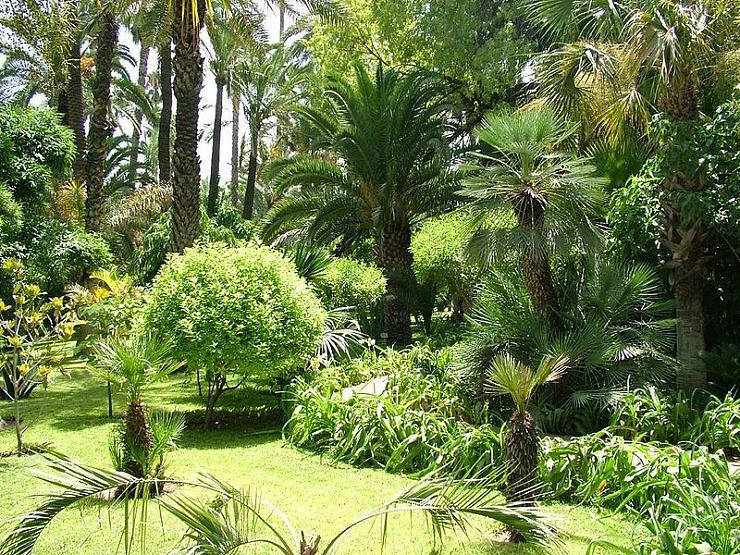 صورحدائق الماجوريل بمراكش الساحره