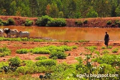 سياحة النيجر 2015