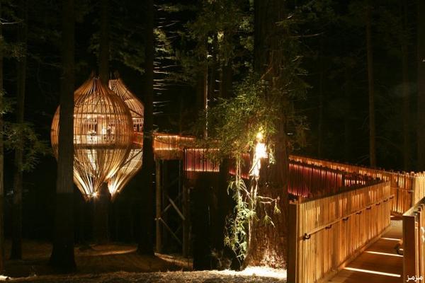 صور مطعم يلو تري هاوس (Yellow Treehouse) نيوزلندا