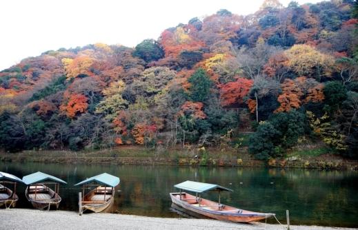 رحلة مصورة الى هونشو هي أكبر الجزر في اليابان