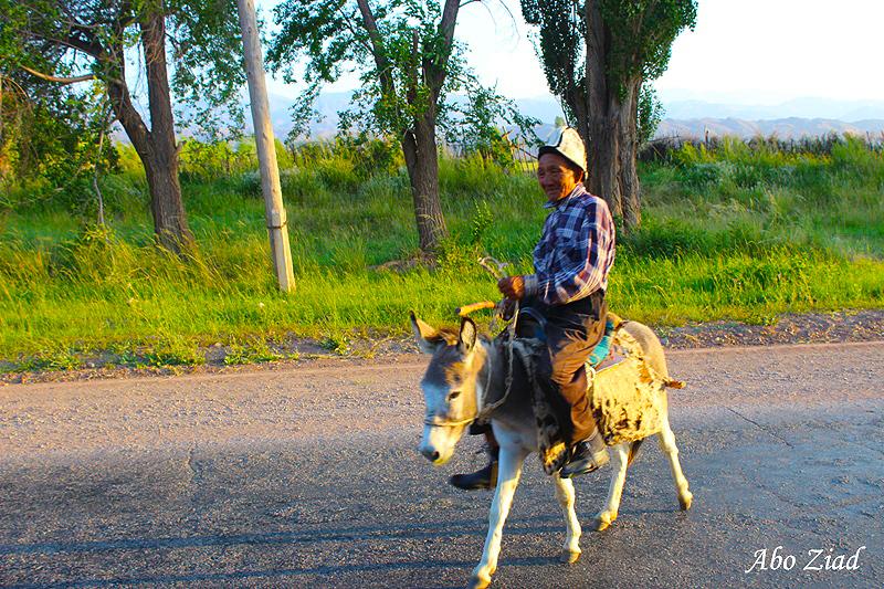 arab_travelers_tours_photo_1409695117_309.jpg