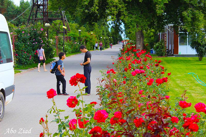 arab_travelers_tours_photo_1409695124_250.jpg