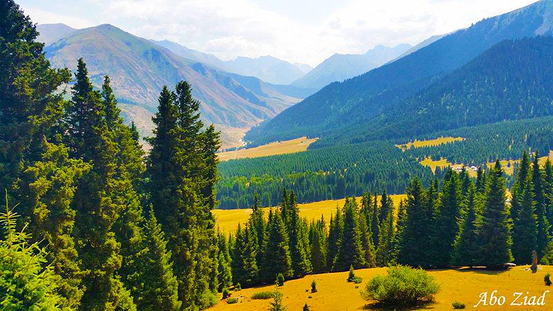 arab_travelers_tours_photo_1409695131_767.jpg