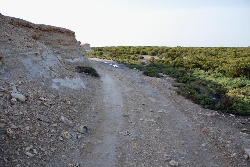 صور مدينه الذخيرة القطريه