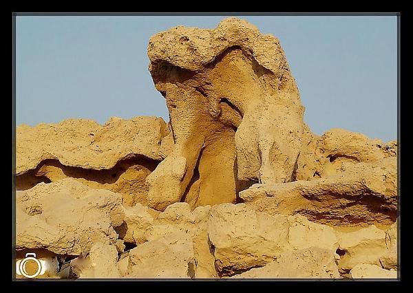 السياحة فى السعوديه ومدينة القنفذه الغائبه عن انظار السياح , جمال سياحة السعوديه