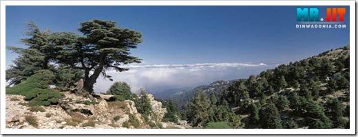جمال السياحة فى لبنان , صور من لبنان , معالم لبنان السياحيه