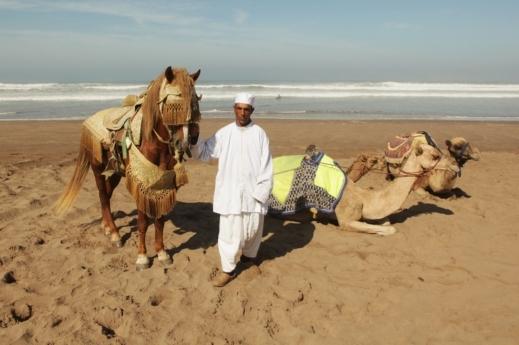 arab_travelers_tours_photo_1412566627_778.jpg