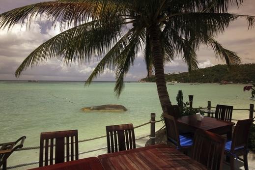 لقضاء شهر العسل، نعرفكم على جزيرة كوه تاو التايلانديه